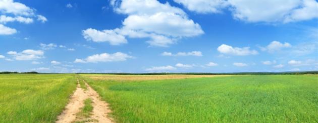 path_grass_sky