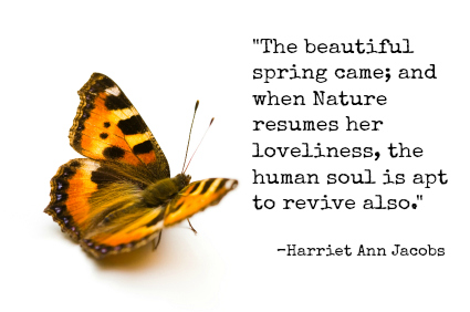 spring butterfly quote