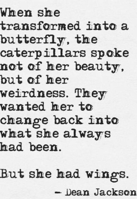 Butterfly_weirdness